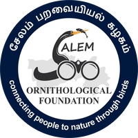 Salem Ornithological Foundation